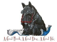 Scottish Terrier Reading a book. They're smart little dogs.