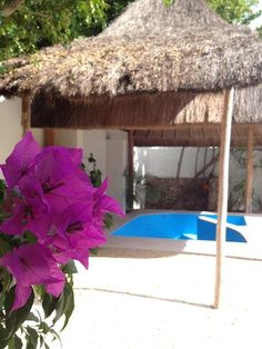Yucatan. House for sale! Your Mexican Home in the best, safest place of Mexico: Merida Yucatan... Just 3 hours from Cancun!  Wooo hoo! :)