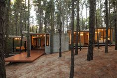 #architecture #design #exterior #minimal #forest #trees #interior - Photo: Gustavo Sosa Pinilla