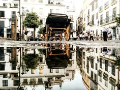 Guido Gutiérrez Ruiz - Taken in Seville, Spain, Ruiz used a puddle to capture the reflection of a horse-drawn carriage