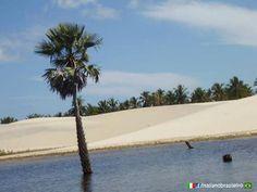 Praia de #Barrinha - (#Ceará) www.italianobrasileiro.com