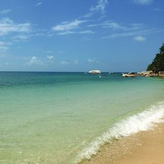 """Here is your daily dose of """"Wish you were here instead"""" .Www.fitzroy-island.com.au to book you trip to paradise. #fitzroyisland lukewc7 #cairns"""
