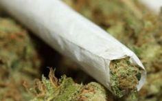 Droga, scoperta banda criminale tra Cerveteri e Ladispoli