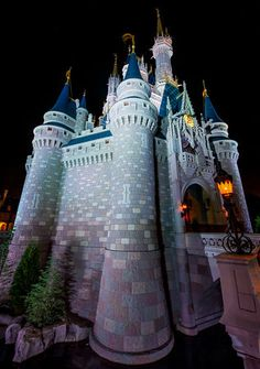 Going to Walt Disney World for the first time? Here are some tips to have a trip vacation!