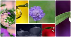 Giot suong - Create your own beautiful photo gallery on Slidely