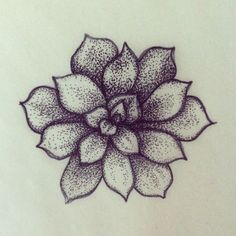 succulent tattoo black - Google Search