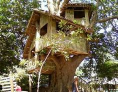 Welcome to Banton-Island, your alternative source of information regarding one of the most famous Paradise Island in Romblon Philippines, the hidden paradise of Philippines. Filipino Architecture, Pinoy, Around The Worlds, Trees, Island, House Styles, Outdoor Decor, Treehouses, Image