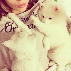 .¸¸. • * ¨ * • Isabel Pink♡ • * ¨ * • .¸¸.