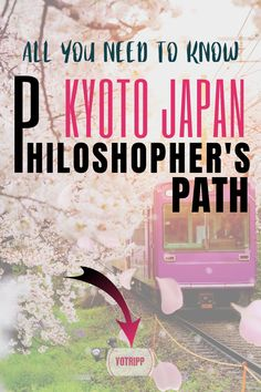 Take the walk of philosophy in Kyoto Japan that walks you through gorgeous sakura, spiritual shrines and temples, beautiful walkways and even a manga museum. If you are looking for places to go in Japan, Philosopher's Path in Kyoto should be on your bucket list! Click to know more about what to do in Kyoto, where to eat in Kyoto and what to see in Kyoto with instructions, timings and all other details. Japan Destinations, Holiday Destinations, Japan Travel Guide, Asia Travel, Pet Travel, Travel Tips, Kyoto Japan, Walkways, Historical Sites