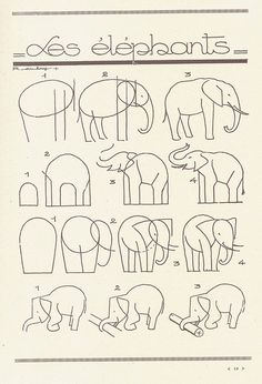 A complete set of how to instructioins for drawing a variety of animals