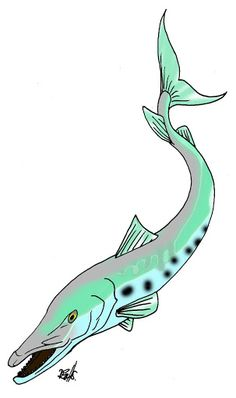 , Turquoise Necklace, Clip Art, Fish, Sea, Jewelry, Jewellery Making, Pisces, Jewelery, Ocean