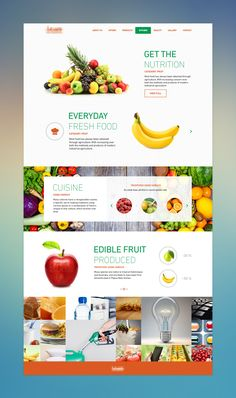 Fresh and nutritious fruit - Alles Über Kinder Website Design Inspiration, Fashion Website Design, Website Design Layout, Web Layout, Food Web Design, Creative Web Design, Brochure Design, Flyer Design, App Design