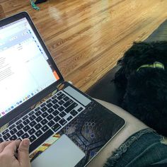 Its finally happening! #writersofinstagram #dogsofinstagram #writingbuddy #writelife #writethisway
