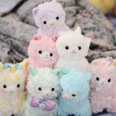 Arpakasso. I want one..or two..or twelve! Like really bad!