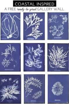 A Free, Ready-To-Print Gallery Wall - blue and white, summer, coastal, sea life