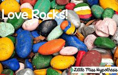 Little Miss Hypothesis - Lessons from the Science Lab! Spice up your rock talk!