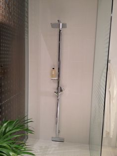 Hansgrohe Raindancer