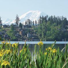 Lake Wilderness Lodg