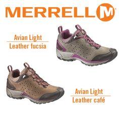 Avian Light