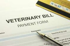 PetCareRx's online survey reveals that the cost of pet healthcare is having a dramatic effect on the lives and lifestyles of pet parents. http://healthypets.mercola.com/sites/healthypets/archive/2014/01/08/veterinary-care-cost.aspx