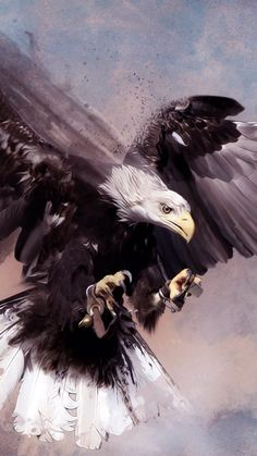 Best Cute Animals Photos You Never Seen Before – Page 2 – icanpinview Eagle Images, Eagle Pictures, Nicolas Vanier, Eagle Wallpaper, Camo Wallpaper, Meaningful Tattoos For Family, Eagle Art, Family Illustration, My Spirit Animal