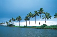 Kerala, one of the most exceptional travel destinations in South India well-matched for honeymooners and family tour travelers.