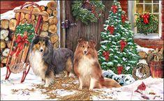 Shetland Sheepdog - Christmas Welcome -  by Margaret Sweeney