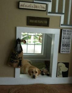 Dog room!...space under the stairs...such a cute idea!