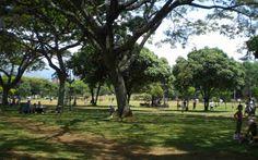 Parque del Ingenio Cali, Golf Courses, Sidewalk, Paths, Parks, Sports, Fotografia, Walkways, Pavement
