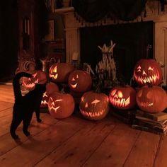 Retro Halloween, Halloween Inspo, Theme Halloween, Halloween Town, Halloween Decorations, Fall Decorations, Spooky Halloween Pictures, Halloween Crafts, Halloween Labels
