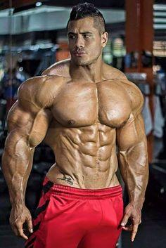 7661f249beb6c9 38 Best Bodybuilding images