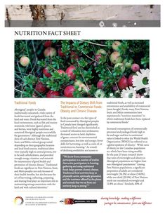 Nutrition Fact Sheet - This fact sheet outlines the impacts of the shift from a traditional diet, consisting of a wide variety of highly nutritious foods harvested and gathered from the land and water, to a non-traditional diet based on commercially processed and packaged foods that are low in nutritional value.