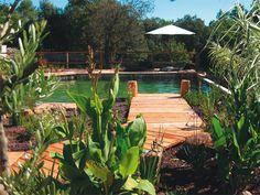 bassin de baignade naturelle design Natural Swimming Pools, Deco, Pretty, Plants, House, Outdoors, Design, Gardens, Swiming Pool