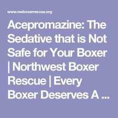 Acepromazine: The Sedative that is Not Safe for Your Boxer | Northwest Boxer Rescue | Every Boxer Deserves A Chance