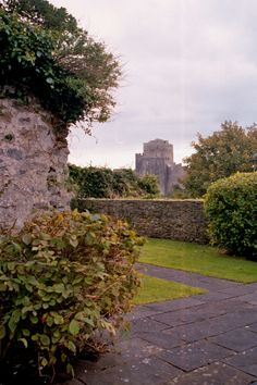 Garden at Landmark Trust property Monkton Old Hall in Pembroke / Pembrokeshire / Wales / UK, with view of Pembroke Castle in background - photograph by L. Hewitt