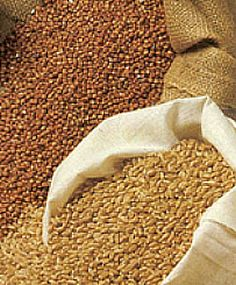 Traditional Grains
