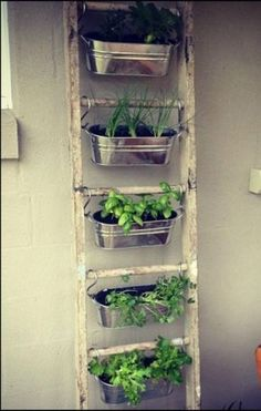 Grow herbs yourself? 12 great ideas for an indoor herb garden -… - Diy And Crafts The Effective Pictures We Offer You About Herbs Garden windowsill A quality pic Small Patio Spaces, Small Space Gardening, Small Garden Design, Small Gardens, Small Rooms, Small Apartments, Outdoor Spaces, Container Herb Garden, Container Gardening Vegetables
