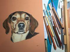 Portrait de chien de chasse Artiste animalier  La Galerie de Julie