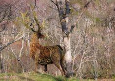 willow sculpture deer