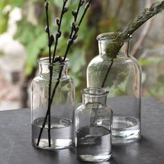 Lovely botanical glass bottle vases for wedding centrepieces & venue styling. Available in 3 sizes - we think they look best if you use both sizes together Use for accent flowers around your wedding venue Use a grouping of these vases as part of your centrepiece, we suggest 3 - 5 per table with flowers to match you Bottle Vase, Glass Bottles, Glass Vase, Wedding Decorations For Sale, Reception Decorations, Wedding Centerpieces, Wedding Table, Centrepieces, Wedding Colors