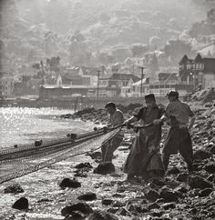 vintage everyday: More of Stunning B&W Photographs of San Francisco in the 1940s-60s by Fred Lyon