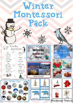 Montessori Inspired Winter Printable for Kids   Winter Around The World   5 Senses in Winter   Scavenger Hunt     Parts of a Polar Bear