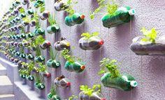 Arquitetar: 5 Ideias e dicas para montar seu Jardim Vertical