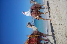 Kamiles on the beach