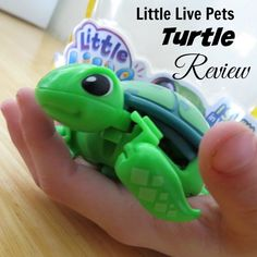 Read our Little Live Turtle Pets Review http://www.best-gifts-top-toys.com/2015/12/tyler-loves-the-little-live-pets-turtle-toy/