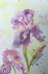 Iris Paintings - Bearded Iris  by Diane Wallace