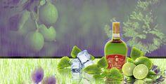 Menta #mint #liqueur #agave #fresh #oaxaca #mayordomo
