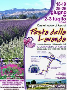 Festa della Lavanda Assisi 2016 @ IL LAVANDETO DI ASSISI Castelnuovo  di Assisi - 18-Giugno https://www.evensi.com/festa-della-lavanda-assisi-2016-il-lavandeto-di-assisi/162156192