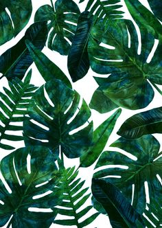 Perceptive Dream || #society6 #tropical #buyart Art Print by 83 Oranges™️ | Society6 Tropical green leaves #afflink