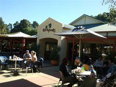 Stickybeaks Cafe, casual children's playground cafe